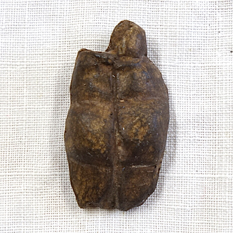 Vénus mainz lisenberg dos et fesses 1