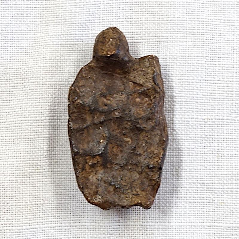 Vénus mainz lisenberg dos et fesses 2