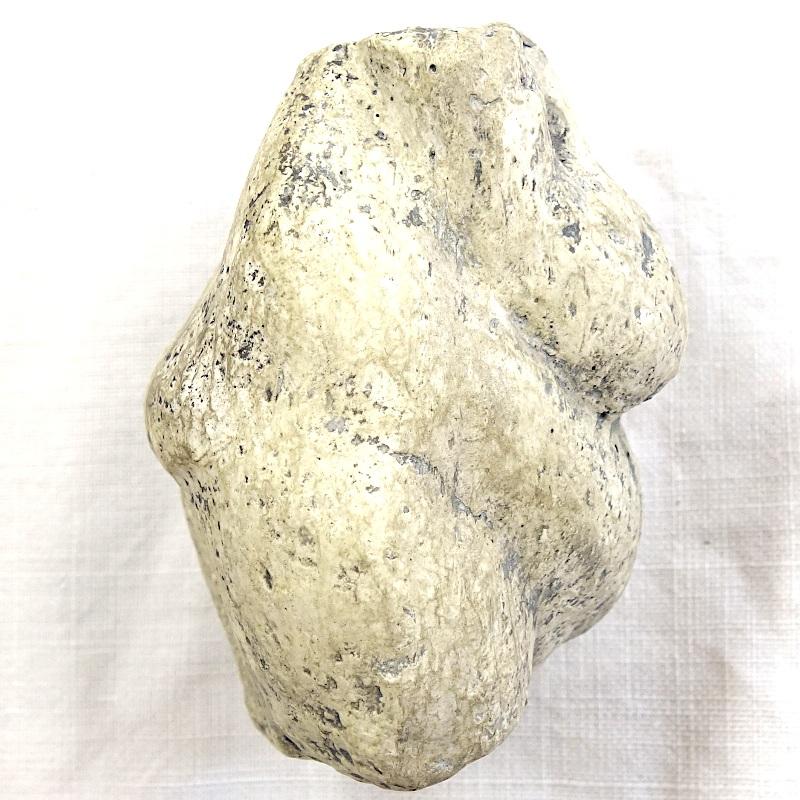 Vénus (tronc) kostenki 3